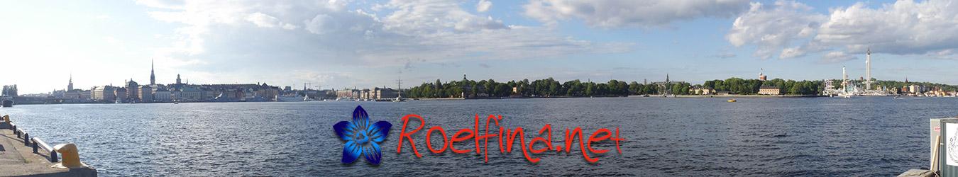 Roelfina.net